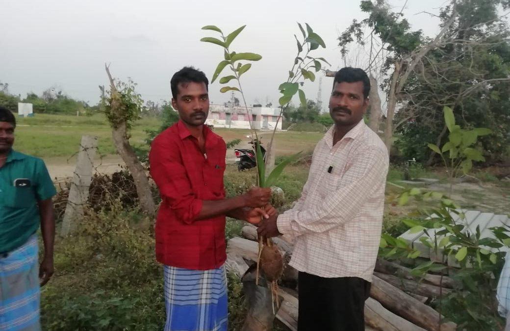 Kallimedu Village, Avarikadu